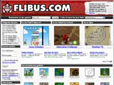 Copie d'écran du jeu Flibus.com