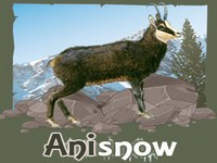Copie d'écran du jeu Anisnow