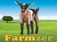 Copie d'écran du jeu Farmzer