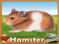 Copie d'écran du jeu HamsterStory