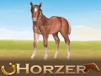 Copie d'écran du jeu Horzer