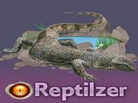 Copie d'écran du jeu Reptilzer